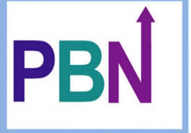 Niche Specific PBN Domain To Boost Rankings
