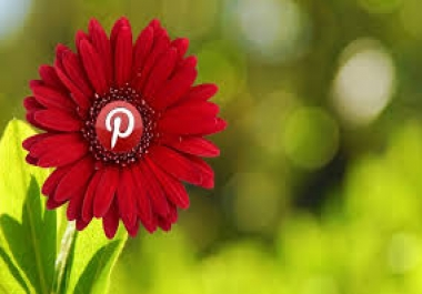 I will provide you 500 real verified Pinterest Followers only