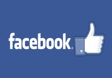 give you 500+ genuin facebook likes