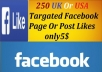 Provide 200 Uk Or Usa Targeted Facebook Likes only