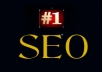 do an seo audit on your site and provide you with a step by step report to get you ranked quickly