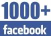 give you worldwide or only European 32 countries based or USA 16 countries based Facebook follower