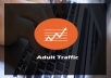 send 10,000 Real Human ADULT Traffic to Your Website