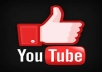 Give you 100+ YouTube Likes In 24 Hours for