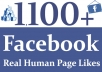 Provide Your Real 1100 Facebook Page Likes