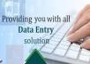do data entry, data analysis, data mining and data analysis for $10