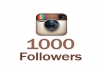 add 1000 instagram real high quality followers