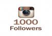 add 1000 instagram real high quality followers