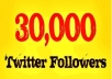 add 30,000 Twitter followers to your Twitter account, NO unfollows, no egg