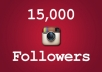 send You 15,000 INSTAGRAM Followers or Likes ASAP