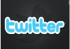 add More Than 800+ Followers on Your Twitter Account Without Your Password