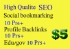 create 10 pr6 Social bookmarking,10 pr6 profile backlinks,10 pr5 edu and gov